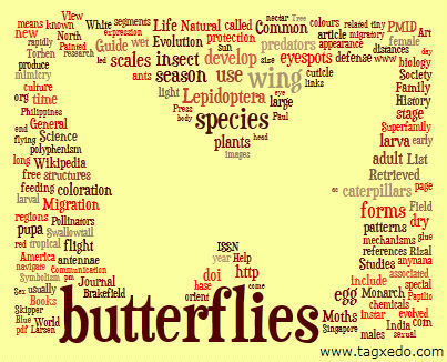 Using Word Clouds to Inspire story Telling