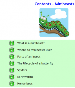 Infant Encyclopedia Minibeasts