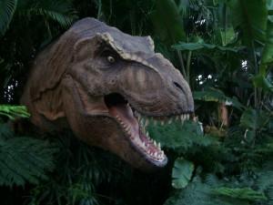 A dinosaur photograph