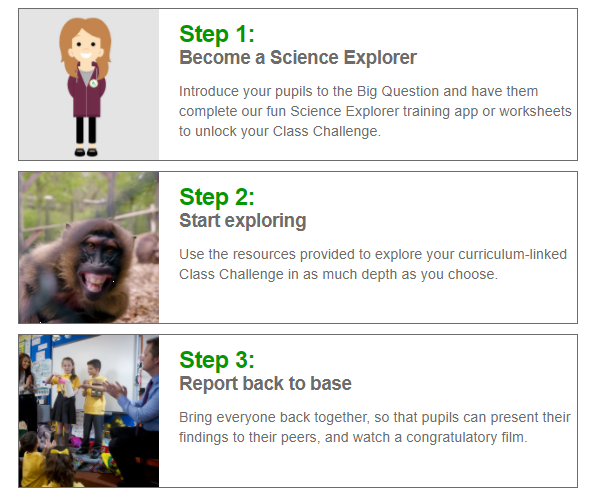 BP Educational Service Primary Resources